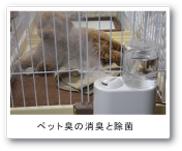 ペット臭の消臭・除菌